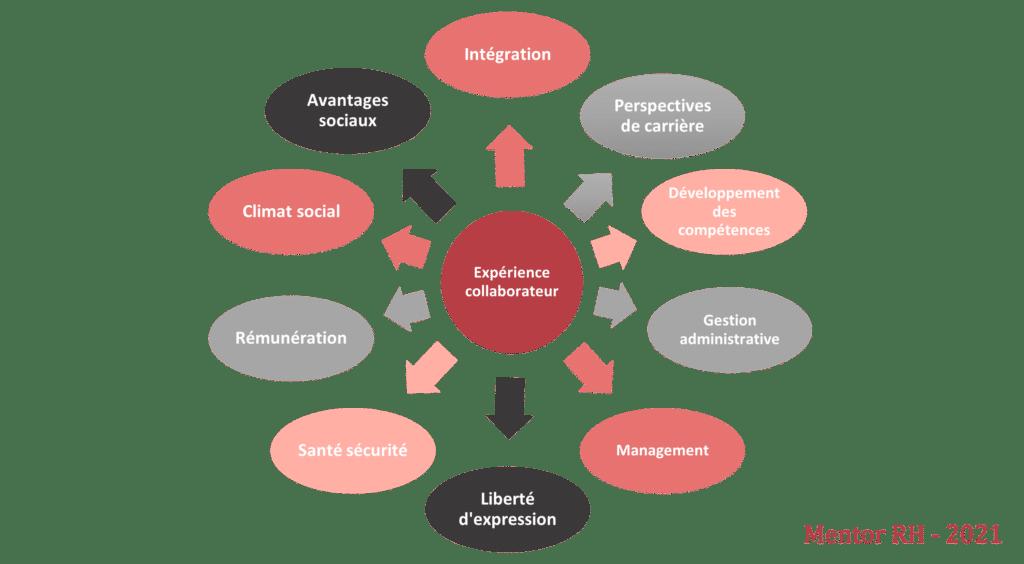 Marque employeur : enjeux pour les services Rh